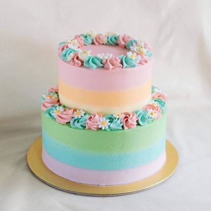 Picture of 2 tier Ombre Cake