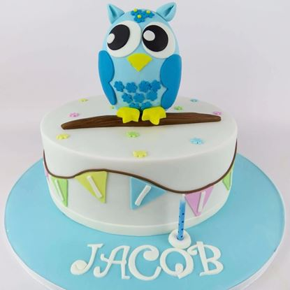 Picture of Blue Owl Birthday Cake
