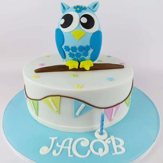 Blue Owl Birthday Cake